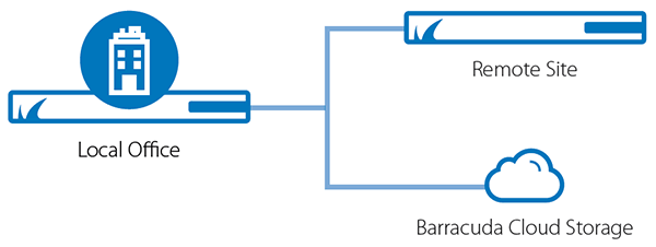 Barracuda Backup has built-in cloud and site-to-site replication